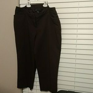 Dark Brown Lane Bryant Capris